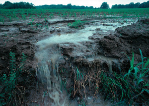 Water Runoff from Crop Field